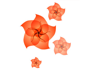 Drawing a flower in illustrator has be implemented
