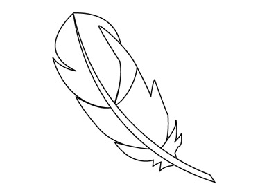 Using the Pen tool create the feather paths.