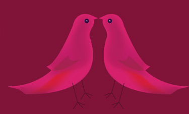 Duplicate and flip the bird. Move to the left. Since it is transparent the beaks will overlap.