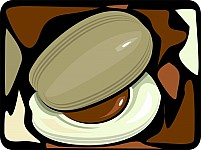 Free Nut And Slice Of Nutmeg Illustration