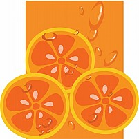 Free Orange slice Illustration