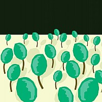 Free plantation 	Illustration