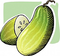 Free cucumber Illustration
