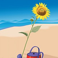 Free Watering The Sunflower Illustration