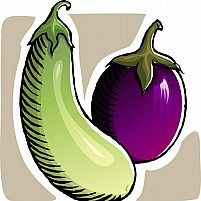 Free brinjal Illustration