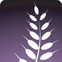 Free plant	Illustration